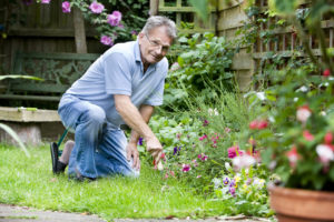 Physio-4 Therapies for Gardening